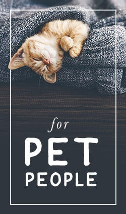 Gifts for Pet People