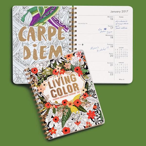 2017 Living Color Coloring Engagement Calendar at Bas Bleu | UL5672