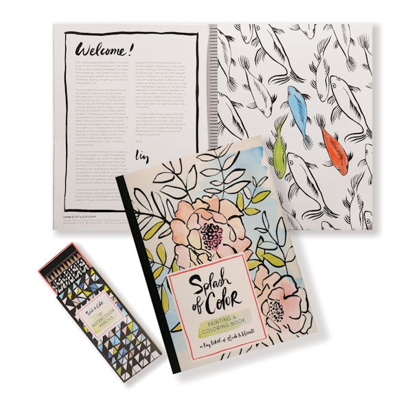 Splash of Color Painting and Coloring Book at Bas Bleu | UM5082