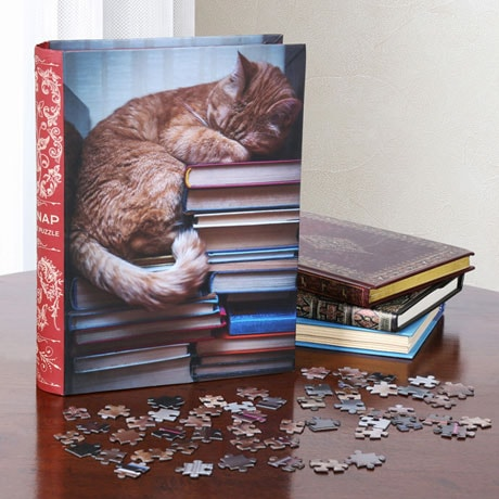 Book Box Puzzles - Cat Nap