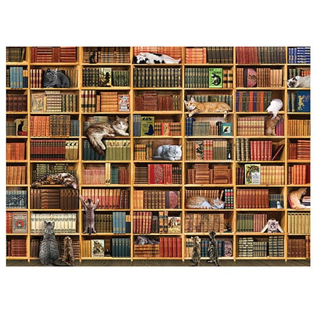 Cat Library Puzzle