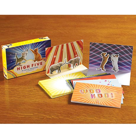 High Five Pop-Up Note Cards