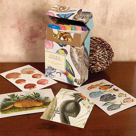 Natural Histories Postcards