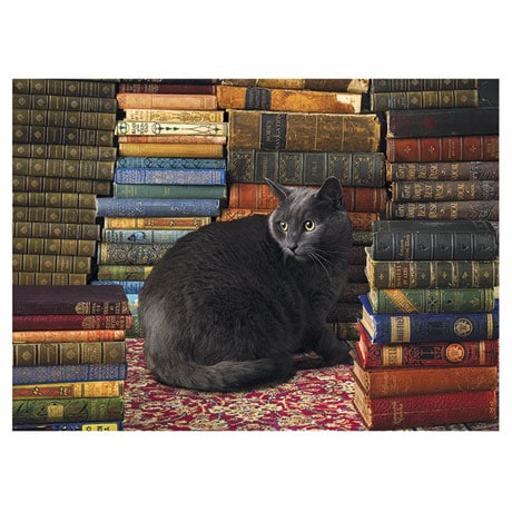 Library Cat Puzzle