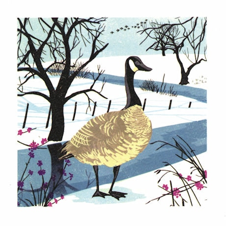 Snow Goose Holiday Cards