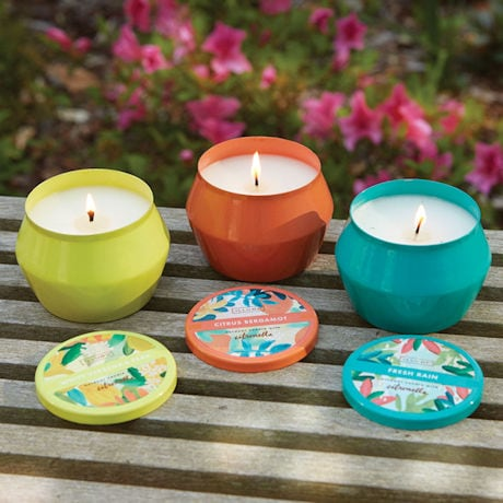 Citronella Candle Tins - White Verbena and Pear