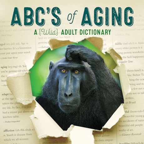 ABC's of Aging