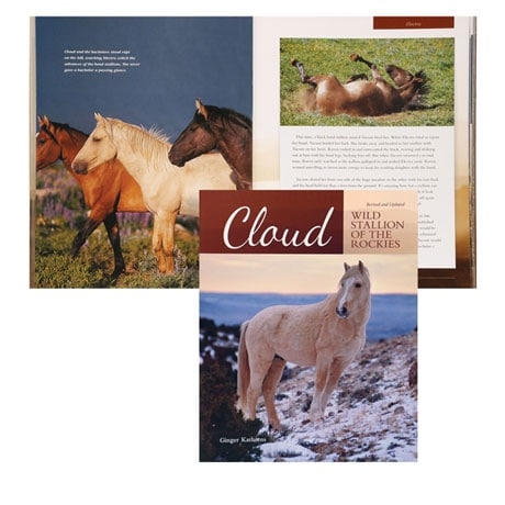 Cloud: Wild Stallion of the Rockies