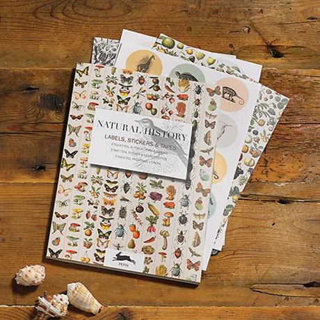 Natural History Decorative Papers