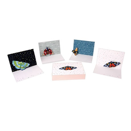 Wings Pop-Up Greeting Cards Boxed Set