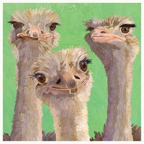 Amigos - Ostrich Napkins