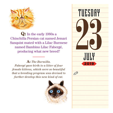 2019 Cat Trivia Page-a-Day Calendar