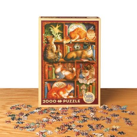 Feline Bookcase Jigsaw Puzzle