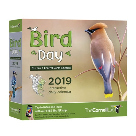 2019 Bird a Day Calendar: Eastern and Central North America