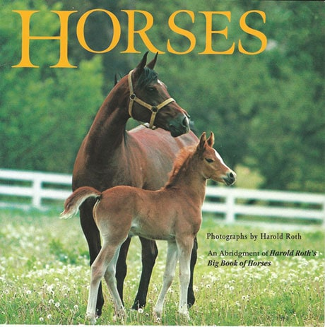 Horses Play Set and Book