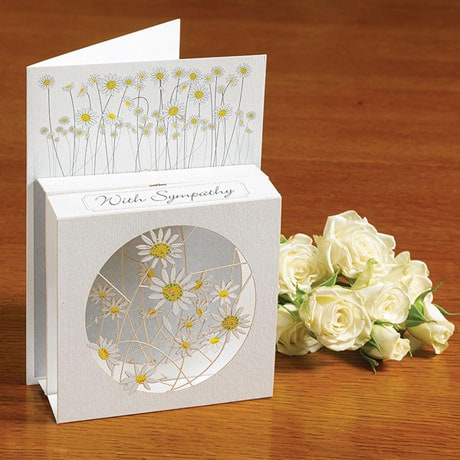 Sympathy Magic Box 3D Card