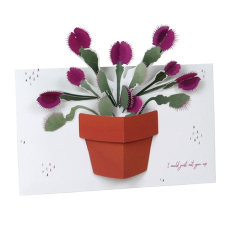 Venus Flytrap Pop-Up Greeting Card