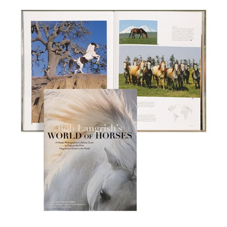 World of Horses