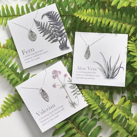 Botanical Amulets - Aloe Vera