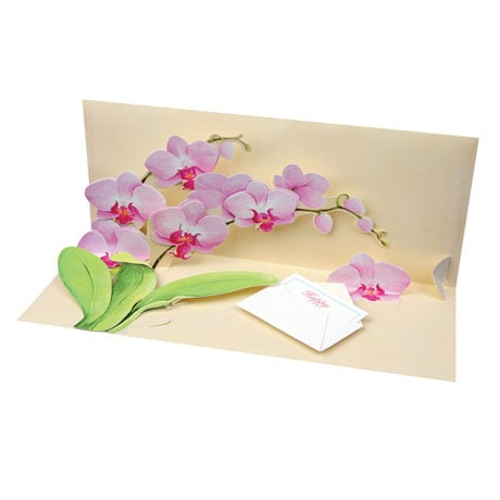 Orchid Panoramic Pop-Up Card