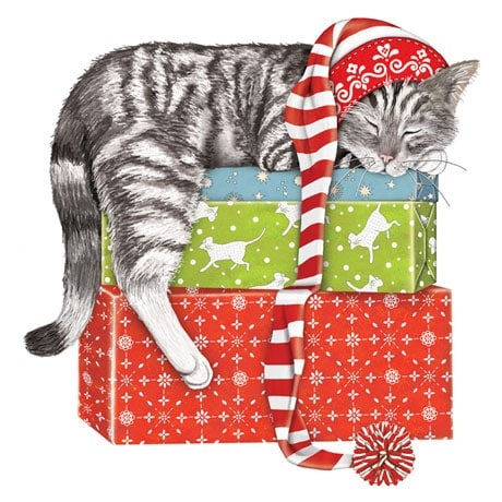 Sleeping Kitty Christmas Cards