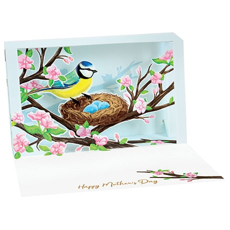 Finch and Nest Mother's Day Pop-Up Card