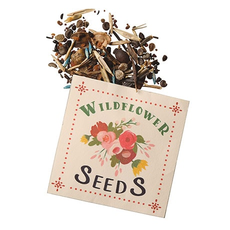 Wildflower Card With Ready-To-Plant Seeds
