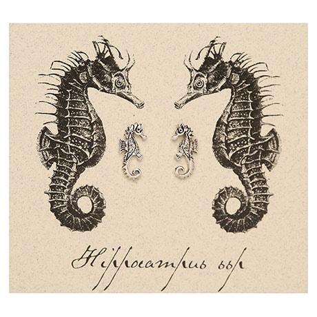 Ocean Life Earrings