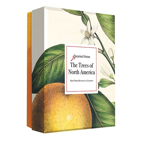 Trees of North America Note Cards