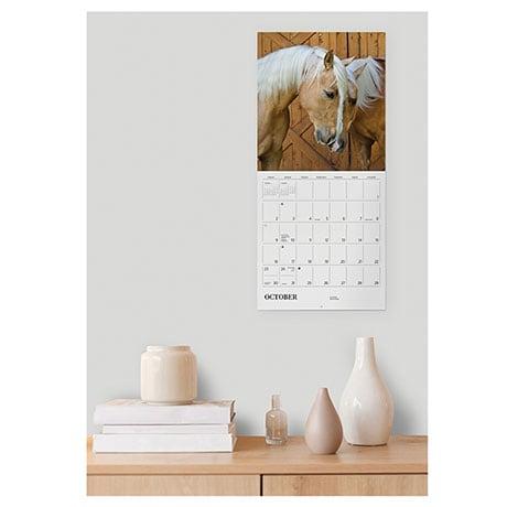 2022 Equus Wall Calendar