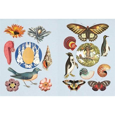 Antiquarian Sticker Hardcover Book