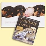 Unlikely Loves