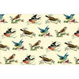 British Birds Wrapping Paper