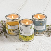 Essence of Nature Candles