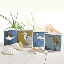 Seabirds Note Cards