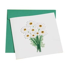 Quilling Cards - Daisies