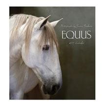 2019 Equus Wall Calendar