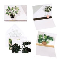 Potted Plants Note Cards