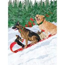 Toboggan Dogs Note Cards