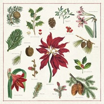Vintage Christmas Botanicals Napkins
