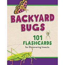 Backyard Flashcards: Bugs