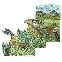 Hares and Open Fields Fold-Out Card