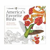 America's Favorite Birds Coloring Book